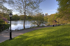 Central Park in spring Stock Photography