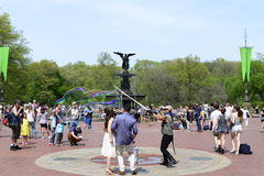 Central Park in Spring Stock Images