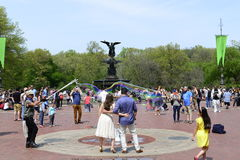 Central Park in Spring Royalty Free Stock Photos