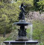 Central Park in Spring Royalty Free Stock Photo