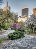 Central Park spring Stock Photos