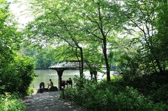 Central Park Spring. Central park in spring, New York City, USA. People sitting beside lake in the park stock images