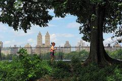 Central Park Spring. Central park in spring, New York City, USA. A woman is running exercise  in the park stock image