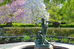 Central Park in the spring, NYC Royalty Free Stock Images