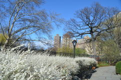 Central Park in the spring, NYC Stock Photography