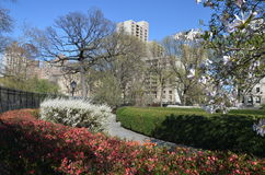 Central Park in the spring, NYC Royalty Free Stock Photo