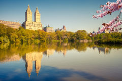 Central park at spring sunny day Royalty Free Stock Image