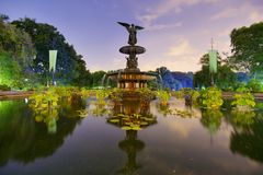 Central Park springbrunn Arkivfoto