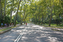 Central park streets on August 6, 2013 in New York, NY Royalty Free Stock Images
