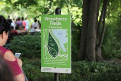 Central park, summer new york stock photography