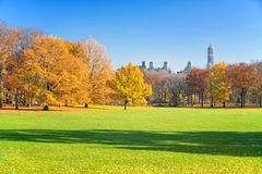 Central park at sunny autumn day Stock Photo