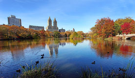 Central park at sunny day, New York City. Royalty Free Stock Image