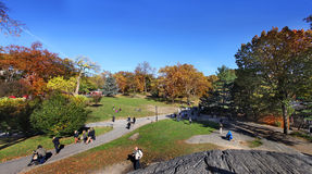 Central park at sunny day, New York City. Royalty Free Stock Photography