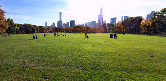 Central park at sunny day, New York City. Royalty Free Stock Photos