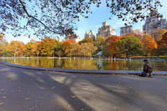 Central park at sunny day, New York City. Stock Images