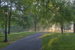 Central Park Sunrise Royalty Free Stock Photos