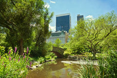 Central Park-Teich und -brücke New York City, NY, USA lizenzfreie stockbilder