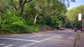 Central park traffic road day 4k time lapse from heart of new york stock footage
