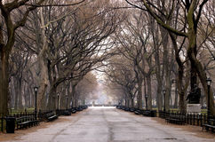 Central Park. Royalty Free Stock Photos