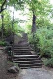 Central Park-Treppe Lizenzfreie Stockbilder