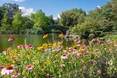 Central Park Uprawia ogródek widok obraz royalty free