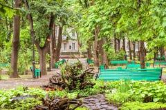 Central Park vert avec des fleurs Photo stock