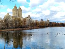 Central Park. View from Central Park Lake Stock Photos