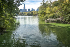 Central park. View on Manhattan from Central Park Stock Photography
