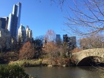 Central Park view, NYC, USA. Stock Images