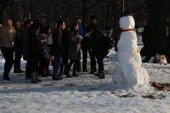 Central Park vinter Royaltyfria Foton