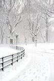 Central Park w śniegu po śnieżycy, Miasto Nowy Jork obrazy royalty free