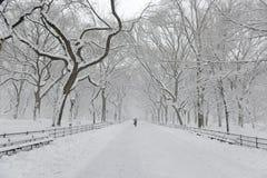 Central Park w śniegu po śnieżycy, Miasto Nowy Jork fotografia stock