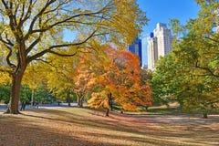 Central Park w jesieni, Nowy Jork Obraz Stock