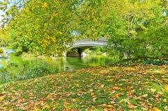 Central Park w jesieni w Nowy Jork Fotografia Royalty Free