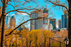 Central Park. While walking the streets of Manhattan, NY royalty free stock image