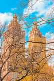 Central Park. While walking the streets of Manhattan, NY royalty free stock photo