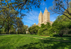 Central Park West Summer morning. Upper West Side, Manhattan, New York City Royalty Free Stock Image