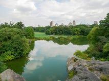 Central Park widok w Manhattan Zdjęcie Stock