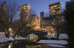 Central Park in winter. Central Park by the pond on 59th street in winter, New York City Royalty Free Stock Photo