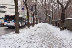 Central Park in Winter Royalty Free Stock Images