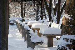 Central Park at winter Royalty Free Stock Photography