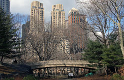 Central park in winter. Central park in New York in winter Stock Images