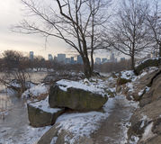 Central park in the winter Stock Photo
