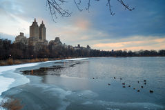 Central Park in Winter, New York City Royalty Free Stock Image