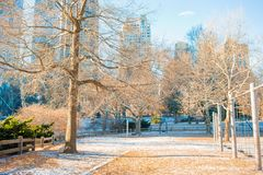 Beautiful Central Park in New York City royalty free stock photography