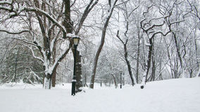 Central Park Winter New York royalty free stock photography
