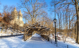 Central Park in Winter. Central Park NY wood tunnel covered by snow Stock Photography