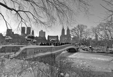 Central Park in the winter, NYC Royalty Free Stock Photography