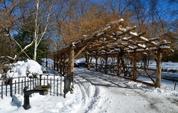 Central Park in the winter, NYC Royalty Free Stock Image