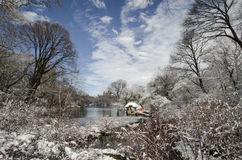 Central Park in winter. Winter in Central Park, NYC with snow Royalty Free Stock Photo